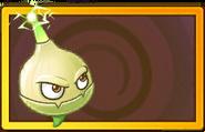 Alarmsagittifolia Legendary Seed Packet