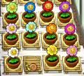 Marigolds zen garden.png