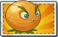 Citron Boosted Seed Packet
