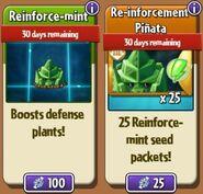 ReinforceMintStore