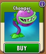 Chomper Store New