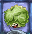 Headbutter Lettuce, behind you
