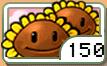TwinSunflower