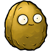 Wallnut body