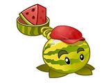 Watermelon line