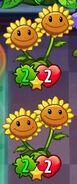 TwinSunflowerswith2StrengthandHealth