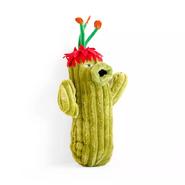 Pvz cactus