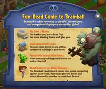 Brain Ball Guide