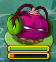 Phat Beet on Lily Pad