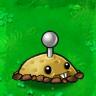 Potato Mine (PvZ)