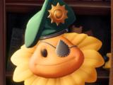 Major Sweetie