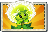 Dandelion Boosted Seed Packet