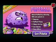Puffball Ad