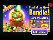 Plant of the Week Bundle - Jack-O-Lantern
