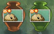 Potato Mine Vases