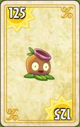 Gumnut Endless Zone Card Level 1-2