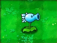 Snow-Pea.png