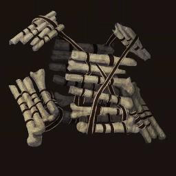 Bone Jacket