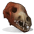 Wolf Skull icon.png