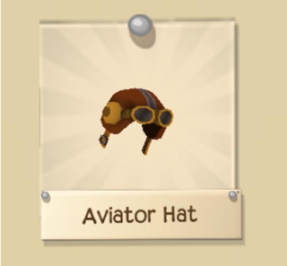 Rare Aviator Hat