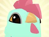 Pet Pekin Rooster