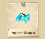 Rare Explorer Goggles