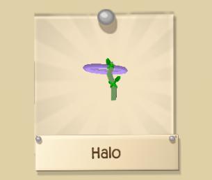 Rare Halo
