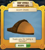 Acorn shoes.jpeg