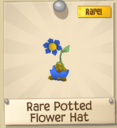 Rare Potted Flower Hat
