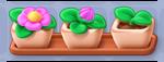 Flower Pots.png