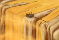 The Crossing Arena Magna.png