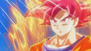 Son Gokū Super Saiyanin God (12)