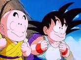 Goku i Kuririn2