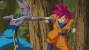 Son Gokū Super Saiyanin God (17)