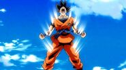 Goku SDBH