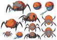 Design spider-lg