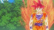Son Gokū Super Saiyanin God (05)