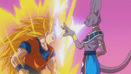 Beers kontra Goku (3)