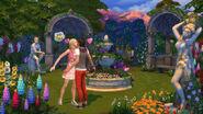 Romantyczny ogrod