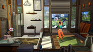 The Sims 4 Fitness 2