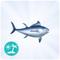 Tuńczyk błękitnopłetwy.png