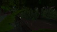 GranitoweKaskady Wiewiórka