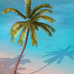 Słoneczne Wybrzeże