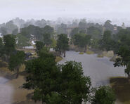 TwinbrookSwamp3