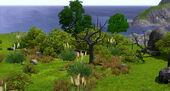 World ScreenshotWeb BarnacleBay001