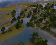 Twinbrook Swamp 1