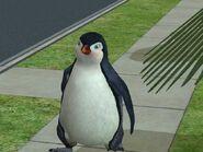 Sims 2 penguin by lilXmissXMCRXriotX