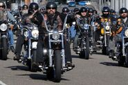Members of 14 N.S.W outlaw motorcycle gangs gather at Moore Park