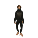 Model chimp
