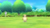 Pokémon Let's Go - Screenshot 05 - Taubsi